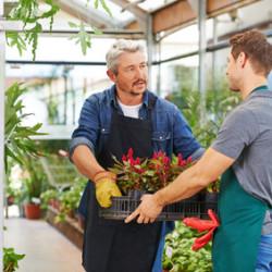 Kurs ogrodniczy online