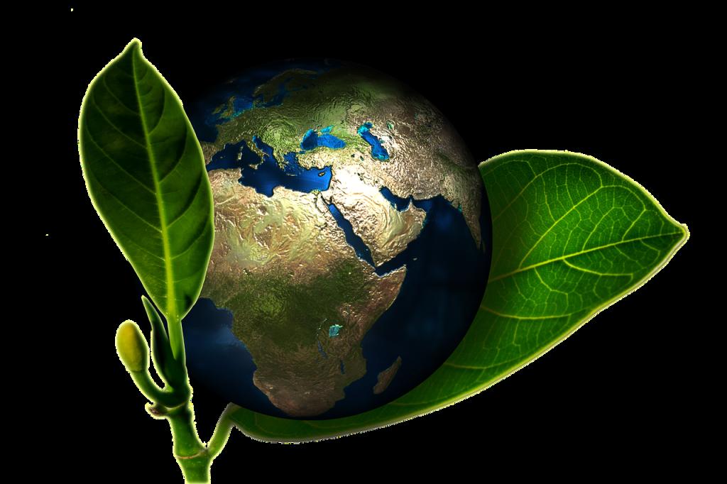 Kurs ochrona środowiska online